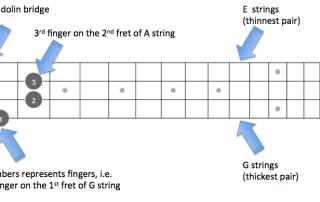 E chord fretboard figure explained