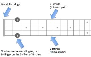 D Mandolin Fretboard explained